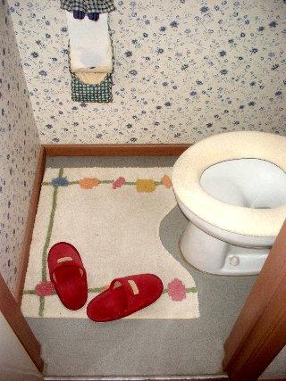 toiletbefore1.jpg