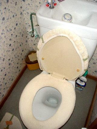 toiletbefore2.jpg