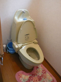 toiletbeforebl.jpg